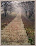"""Пройдя часть жизненного пути, каждый из нас, рано или поздно, задумывается - """"А что дальше?""""..."""