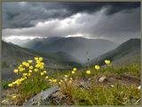 Ровно через месяц, 3-го июня, состоится 10-дневный поход на Мультинские озёра - одно из красивейших мест Горного Алтая. Если не хотите бездарно промотать свой отпуск - спешите присоединиться к нашей группе! Заявку - на http://pohodnik.info
