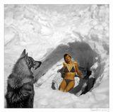 дела давно минувших дней...собака - это волк. Слайд подарен мне лет 20 назад Д. Резчиковым, мои сканирование и обработка...почему-то вспомнилось...