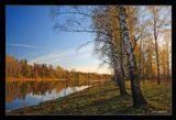 Рискну пейзажем..Снята пару дней назад ,там же ,где и предидущая. В Киришском районе ,Ленинградской области,на реке Тигода.