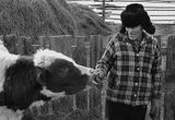 Буряти, мой дед, корова (меня так не подпустила) :)