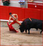 Продолжаем репортаж с корриды, начатый ранее :-). Коррида - это элемент жизни испанцев, как для нас футбол, для американцев - бейсбол, для немцев - Октоберфест :-). Это спорт, искусство и традиция - в одном флаконе. Понять ее, оценить, увидеть, что привлекает и завораживает в ней миллионы людей, - вот в чем мне кажется главная задача любого, кто попдадает на это представление и кто открыт к воприятию чужих культур и традиций.