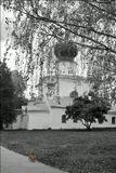 Псков, сентябрь 2003 г.