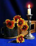 """В детстве мы называли эти цветы -""""цыганочки"""".  Гайлардия - настоящее их название :)"""