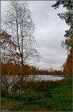 Осенний Карагайский Бор