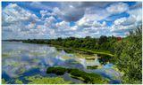 Липецк, мост, река Воронеж