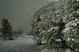 Мощный снегопад свалился на город