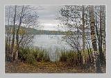 """Внесу и я свои 5 коп. в нонешнюю """"Песнь об Осени""""... :) Грибов в тот год на острове было - видимо-невидимо... Их же там никто не собирает... Снимок сделан почти ровно год назад - 17 октября 2006 г."""
