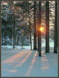 Зимний закат. Снимок сделан 4 года назад, в морозный день. Глубинка Архангельской области