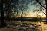 25 февраля 2007гОчень хочется настоящей зимы со снегом !!!!